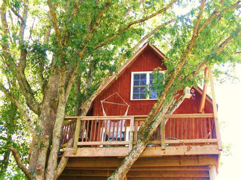 Treehouse Rentals-treehouse Vineyards