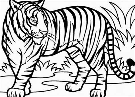 Coloring Tiger by Baby Tiger Coloring Pages Getcoloringpages