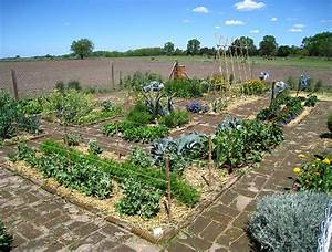 1000 images about huerta on pinterest gardens animales for Huerta organica