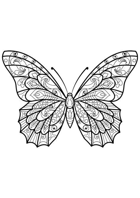 disegni da colorare per adulti farfalle insetti 60272 farfalle e insetti disegni da colorare