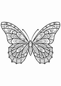 beautiful butterfly coloring pages - butterfly beautiful patterns 3 butterflies insects