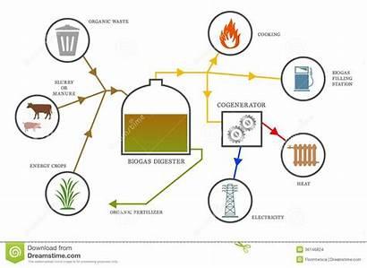 Biogas Diagram Biogaz Diagramme Biomasse Diagramma Generator