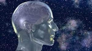 Is The Human Brain Hardwired For God