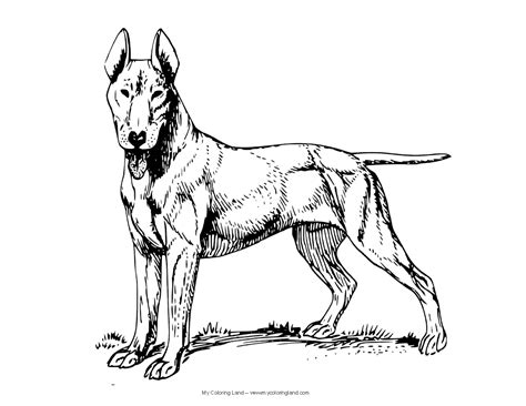 Police Dog Coloring Pages Color Bros