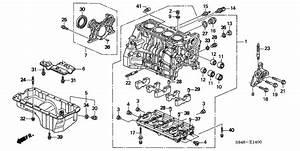 Wiring Diagram Honda F23a