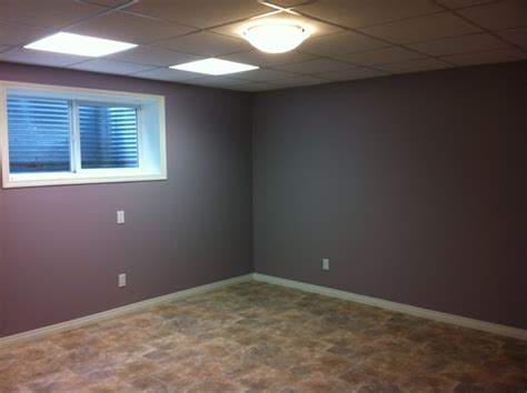 purple basement traditional basement edmonton