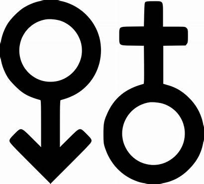 Male Female Icon Sign Svg Woman Users