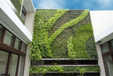 Add Color To Your Yard With Gsky's Succulent Green Walls