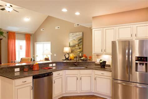 cuisine cuisine bois peint idees de couleur