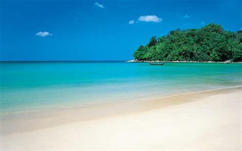 Green Tropic Island Beach Background
