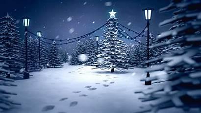 Winter Wonderland Walking Behance