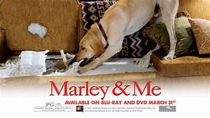 Marley and Me images Marley and Me HD wallpaper and ...