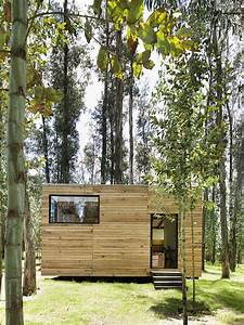 Beautiful Green-roofed Tiny House Is An Eco-friendly Abode In The Woods