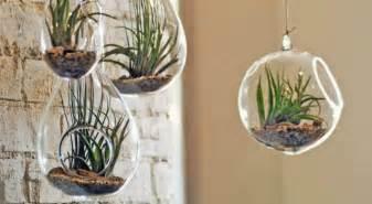diy  idees creatives pour  jardin dinterieur bio