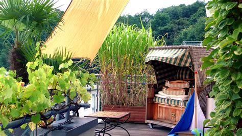 Hochwachsende Pflanzen Sichtschutz by Sichtschutz Auf Dem Balkon Durch Pflanzen Ndr De
