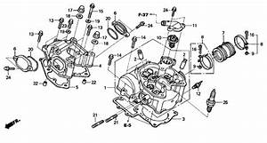 Honda Rincon Parts Diagram  U2022 Downloaddescargar Com