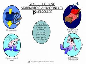 Adrenergic Antagonists (Beta Blockers) - Side Effects ...