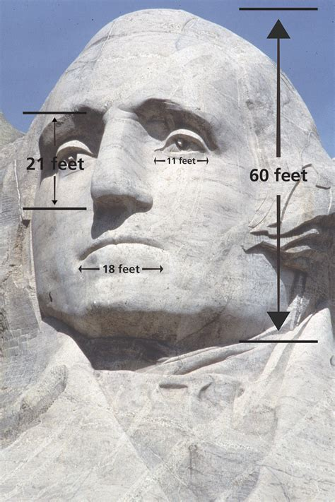 rushmore mount washington tall feet head george 60 heads nose trump national foot thought memorial wide smaller lincoln moru mouth