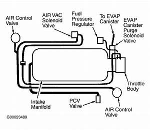 Pcv Valve  Where Is The Pcv Valve Located On The 2001