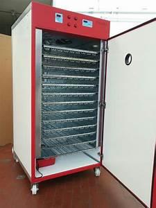 Couveuse Oeuf De Poule : couveuse automatique 1600 oeufs maroc recherche de ~ Premium-room.com Idées de Décoration