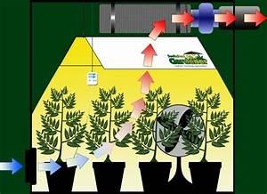 Indoor Grow Anleitung : small room design small grow room setup ideas marijuana grow rooms for sale best indoor grow ~ Eleganceandgraceweddings.com Haus und Dekorationen