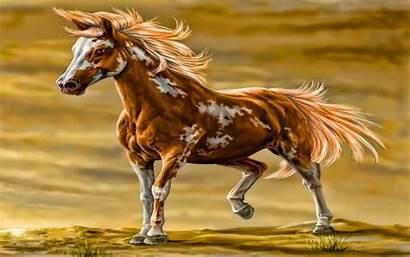 Horse Paint Desktop Horses Wallpapers Backgrounds Cool