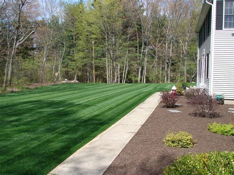 Rhode Island Sod And Turf Farm Prices, Delivery And