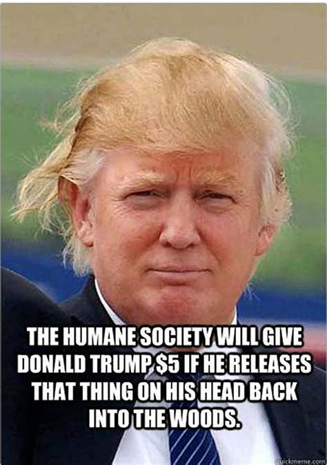 Trump Hair Memes - the best meme reactions to trump s major announcement