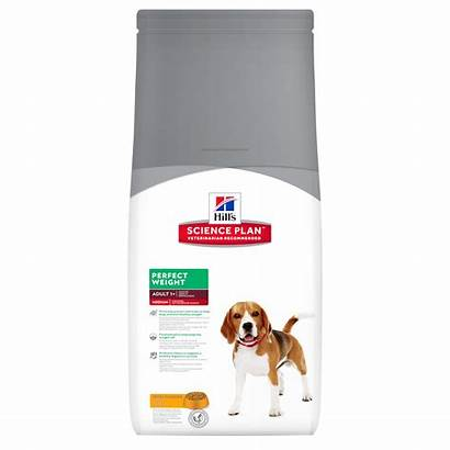 Weight Medium Perfect Hills Science Canine Adult
