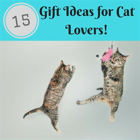 gift guide cat lovers gifts