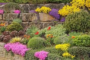 Pflanzen Für Trockenmauer : steingarten gestalten die besten ideen tipps und hinweise ~ Orissabook.com Haus und Dekorationen