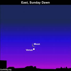 Moon, planet Venus adorn eastern sky before sunrise May 25 ...