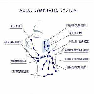 How To Do Lymphatic Drainage  Face  U0026 Neck  With Video