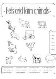 pets  farm animals number  colour farm animals