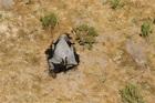 專家憂成「公衛危機」!非洲360頭大象離奇暴斃 可能死因曝光 | ETtoday國際 | ETtoday新聞雲
