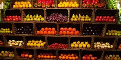 Wholesale Supplier Suppliers