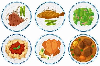Vector Illustration Types Different Plates Diet Plate