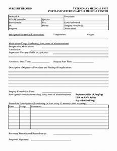 27 images of printable veterinary medical record template With veterinary forms templates