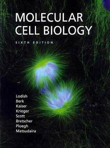 Free College Textbooks Pdf  Molecular Cell Biology By