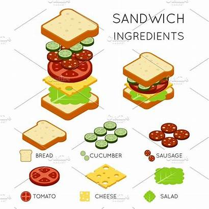 Sandwich Ingredients Illustrations Vector Graphics Microvector