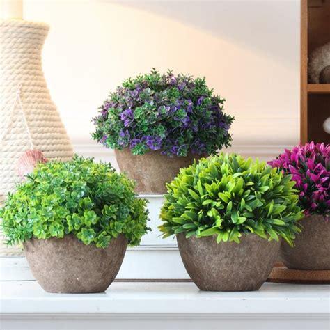 snob comme un pot de chambre plante extérieur en pot en 35 idées déco