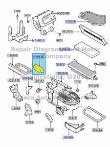 Oem Heater A  C Evaporator Gasket 2006