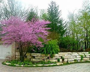 Residential Landscape Throughout The Growing Season
