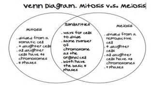 Mitosis and meiosis venn diagram mitosis and meiosis venn diagram mitosis vs meiosis in this mitosis and meiosis venn diagram ccuart Images