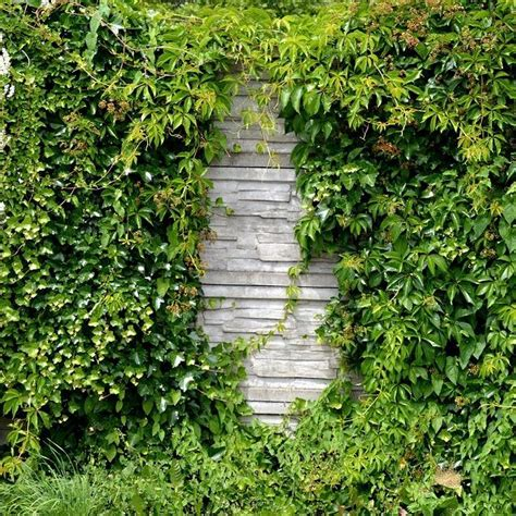 Garten Und Landschaftsbau Coburg by Garten Und Landschaftsbau Neustadt Bei Coburg