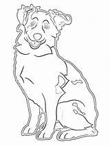 Kleurplaat Australiano Leukekleurplaten Kolorowanka Australijski Owczarek Dibujosparaimprimir Kleurplaten 1001coloring Ladnekolorowanki Coloringpage sketch template