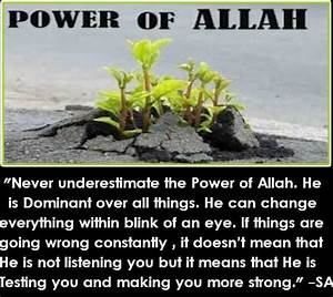 Islam Miracles: Power of Allah