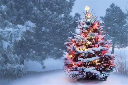 Christmas Maine Inn