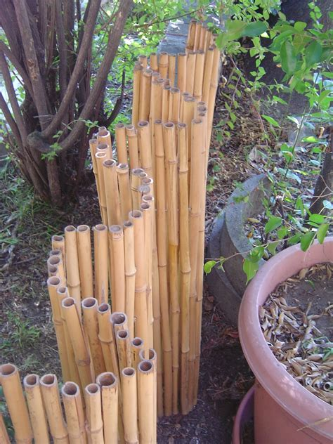 bamboo fencing rolls how to install rolled bamboo fencing design ideas 4294