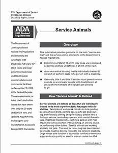 service dog certification scams k9 partners for patriots With service dog documentation letter